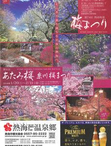 poster-30ume-sakura